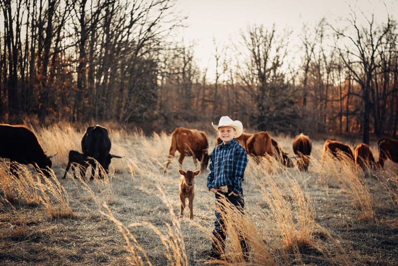 Children Photography, little boy in blue shirt standing with cattle