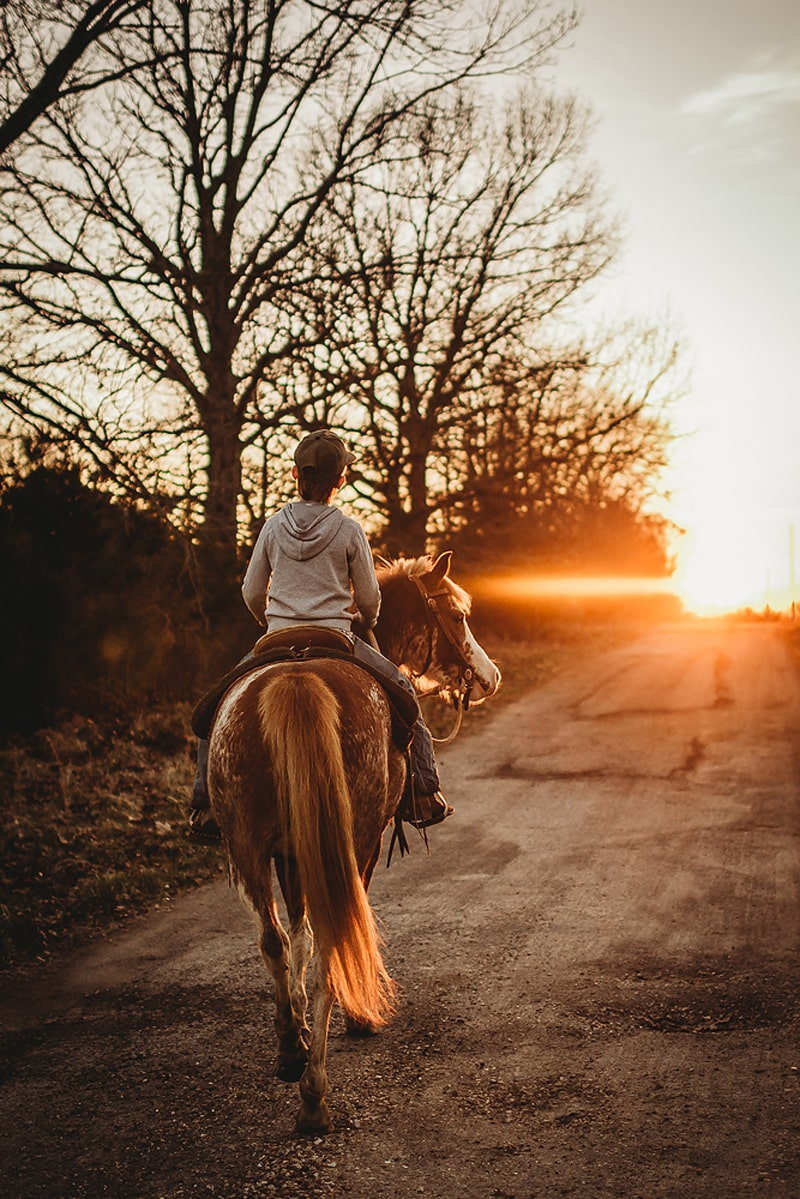 Children Photography, boy riding away on a horse