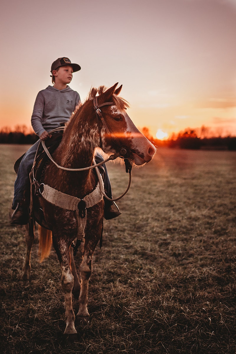Children Photography, boy sitting on top of a horse